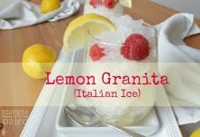 paleo-lemon-italian-granita-recipe